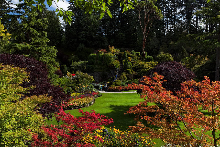 The United States of the Solar System: A.D. 2133 (Book Two) - Page 37 Butchart-gardens--sunken-garden-matt-dobson