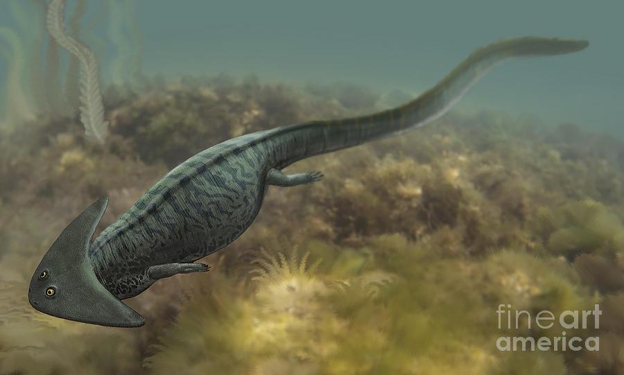 Gorgonopsid [CP] Diplocaulus-salamandroides-sergey-krasovskiy