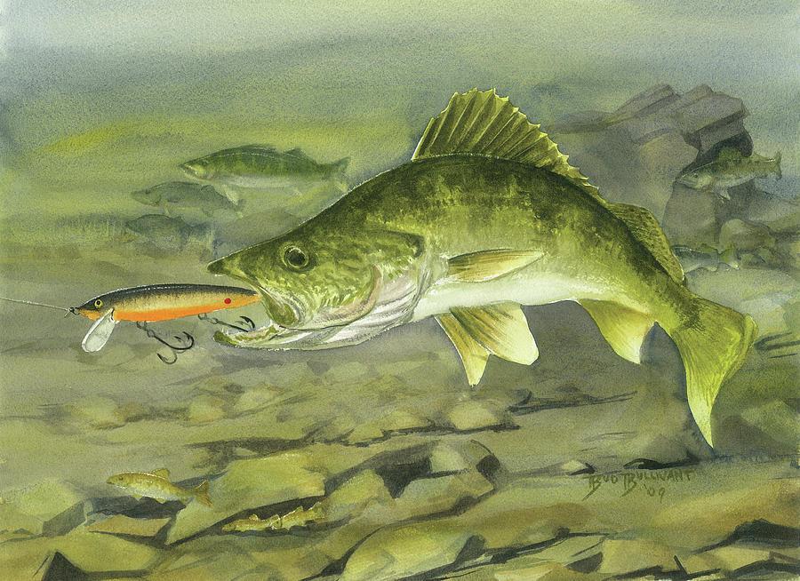 Omaž ribolovcu i ribolovu - Page 6 Rocky-reef-walleye-bud-bullivant