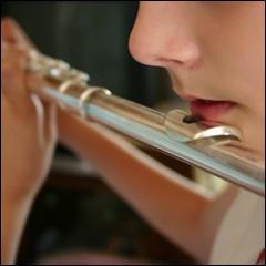 Salut la compagnie - Page 2 Flute-traversiere-source_vt6