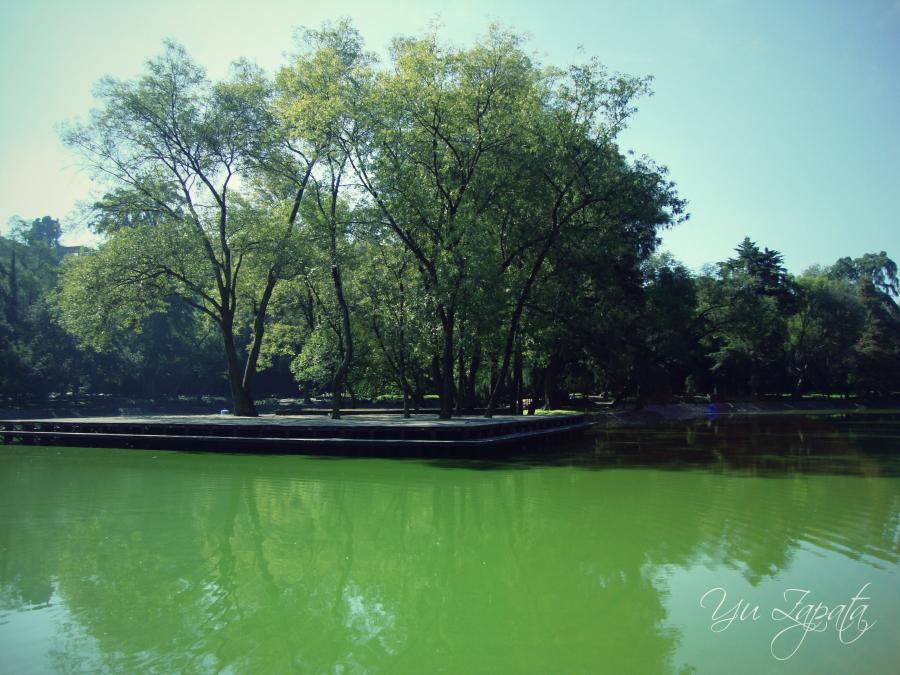 )))El color de la Naturaleza((( 4_wic6