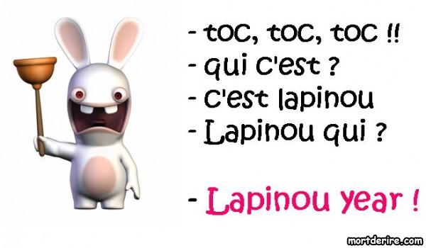 Bonne année 2013 à tous!!!!! Lapinou-year