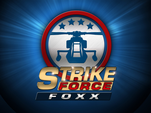 Strike Force Foxx review (3DS eShop) Cover_large