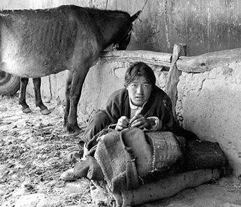 Tíbet, fotografías de 1950-1960 2009%5C03%5C04%5C161318351