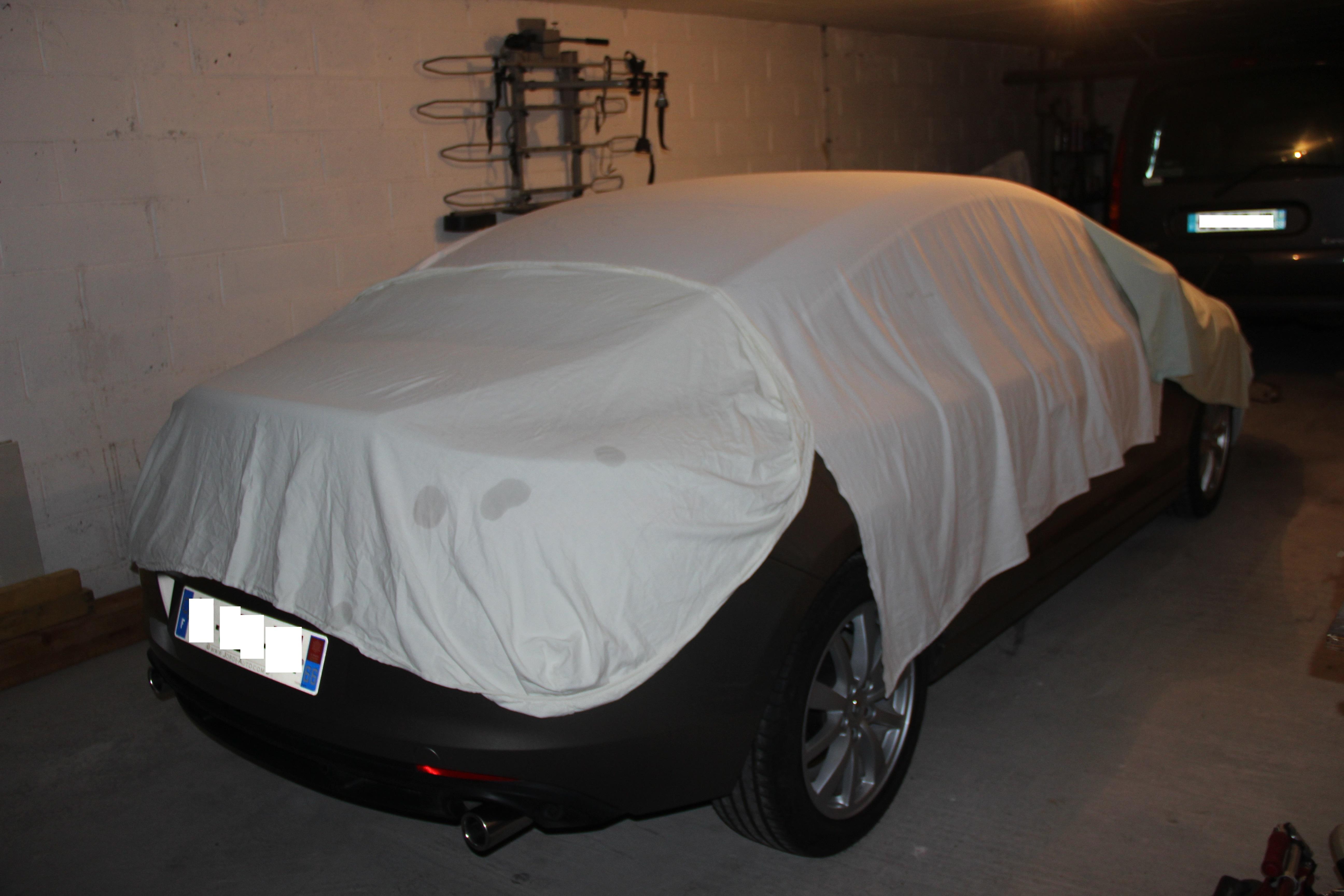 [nathanjo] Laguna III coupé initiale 3.0 dCi 235 IMG2988