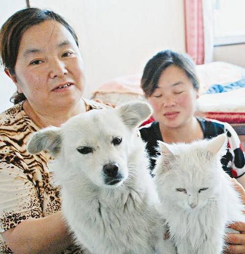 Mèo đẻ ra chó? 1074618785_3e4100622cl4meocho_1