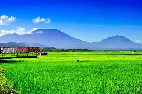 Khoảnh khắc đẹp của Đông Nam Á 502109110_Laguna__The_Philippines