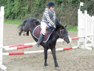 "TUTORIEL: Custom ""My dream horse"" Malice Cec120813173985_art"