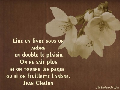Citations & Proverbes en Français (Images) Midoun129771673761_art