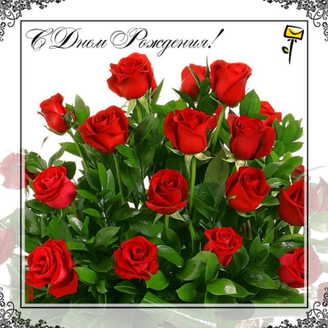 Поздравляем с Днем Рождения  ДМИТРЕНКО  ТАТЬЯНУ  ГЕОРГИЕВНУ (ФИАЛКУ)! 462539_m