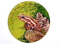 Роспись на сырой яичной скорлупе(гуашь)на заказ - Страница 3 3875400_s