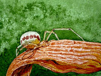 Роспись на сырой яичной скорлупе(гуашь)на заказ - Страница 3 4452043_s