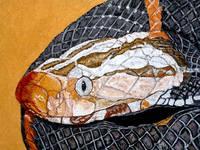Роспись на ломаной яичной скорлупе,гуашь 4452049_s