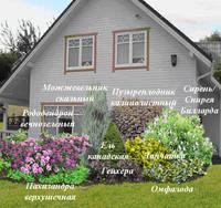 Участок с ноля для нулевого садовода-огородника - Страница 11 4537538_s