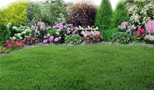 Участок с ноля для нулевого садовода-огородника - Страница 11 4538051_m