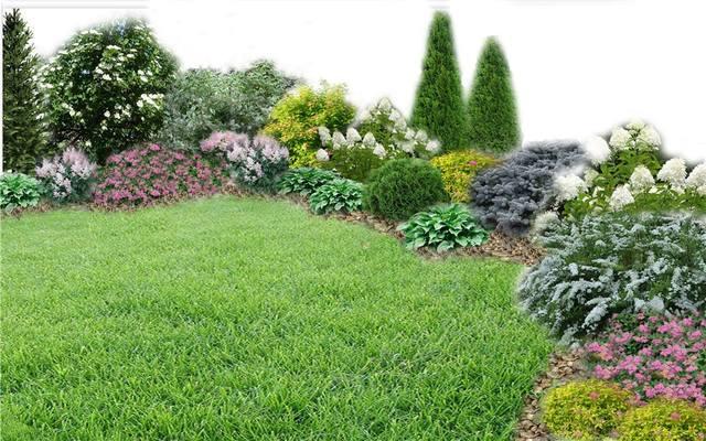 Участок с ноля для нулевого садовода-огородника - Страница 11 4538334_m