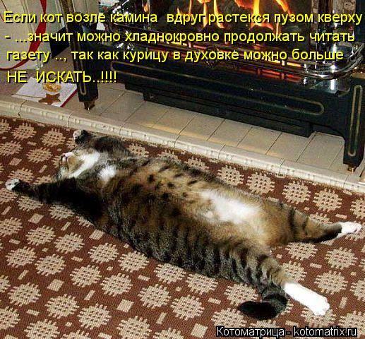 Кошки (Cats) - Page 4 6473254_m
