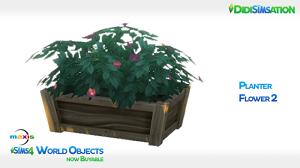 Цветы - Страница 3 17056718