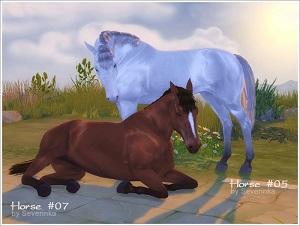 Декоративные животные 17077571