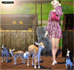 Декоративные животные - Страница 2 17077762