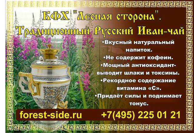 28 октября, гонка «Стандартизация 2017». Московская обл. 19113021_m