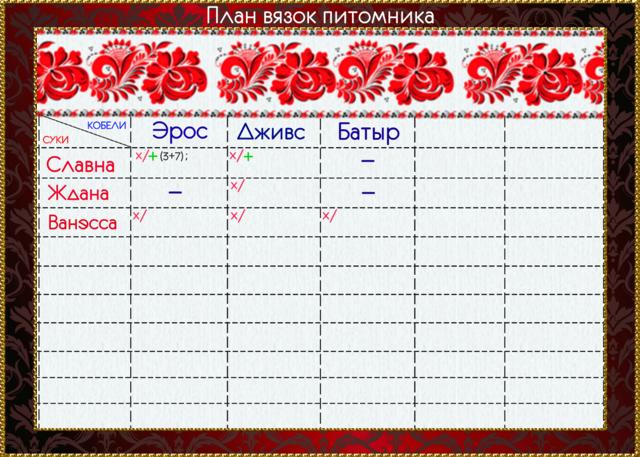 Наши планы. 20102216_m