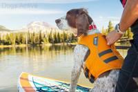 Магазин DOGS ACTIVE профессиональная амуниция для собак - Страница 5 22333583_s