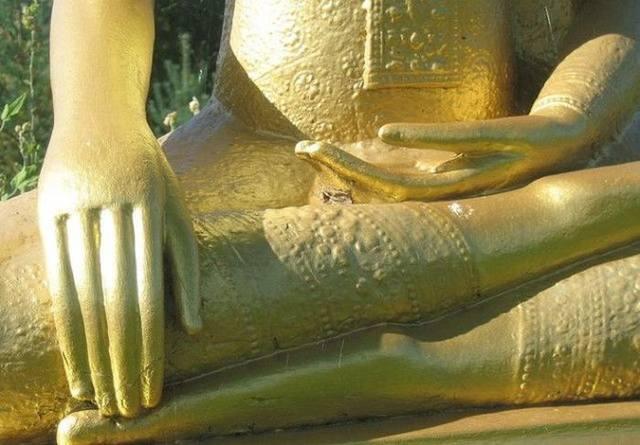 10 жестов Будды 25531573_m
