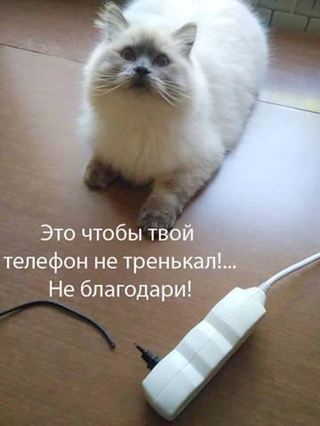 Улыбнуло) 26187724_m