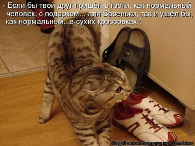 ДЕМОТИВАТОРЫ 29089384_m