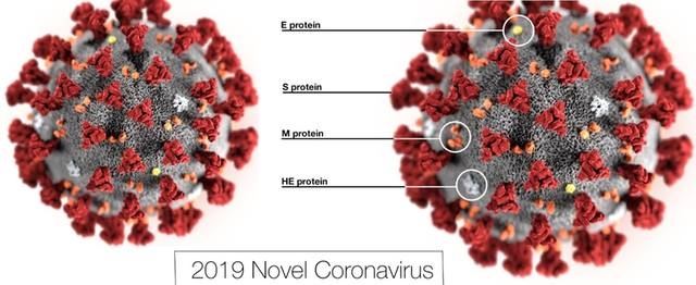 ПАНДЕМИЯ КОРОНАВИРУСА COVID-19 (coronavirus pandemic) - Page 3 30037839_m