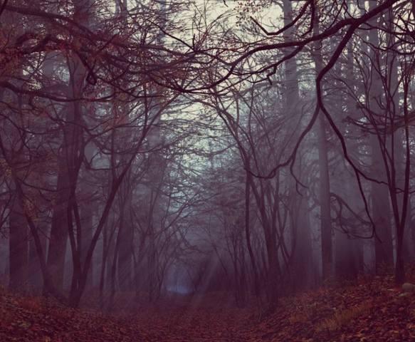 Осеннее Макошье - самое Чародейное Время в Году. 32031394_m