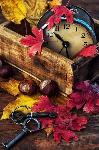 Магический Календарь на Ноябрь 2020 года. 32194937_m