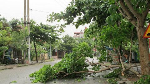 Cận cảnh bão số 1 qua ảnh Images2000973_TT1