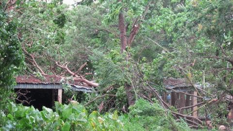 Cận cảnh bão số 1 qua ảnh Images2000974_TT22
