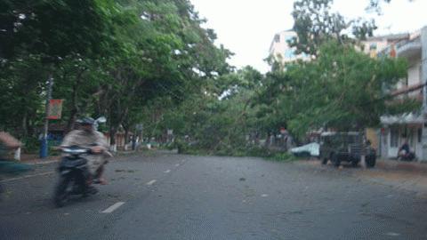 Cận cảnh bão số 1 qua ảnh Images2000976_TN1