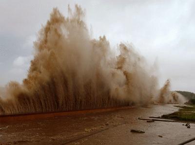 Cận cảnh bão số 1 qua ảnh Images2001039_a7_copy