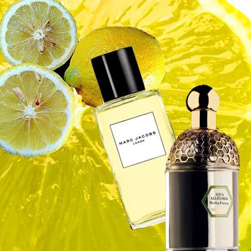 I profumi dell'estate Limone