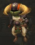 [Encyclofélyne] Les armures Doboruberuku_armor