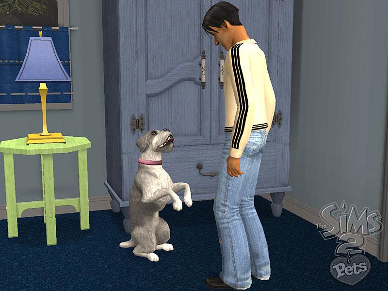 Los Sims™ 2: Mascotas LS2_Mascotas_03