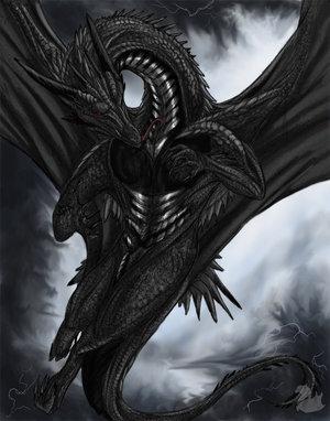 Mystic Shadow Black_dragon