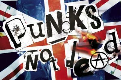 Συλλογές :P - Σελίδα 2 Maxi-Posters-Punk-s-not-dead-73449