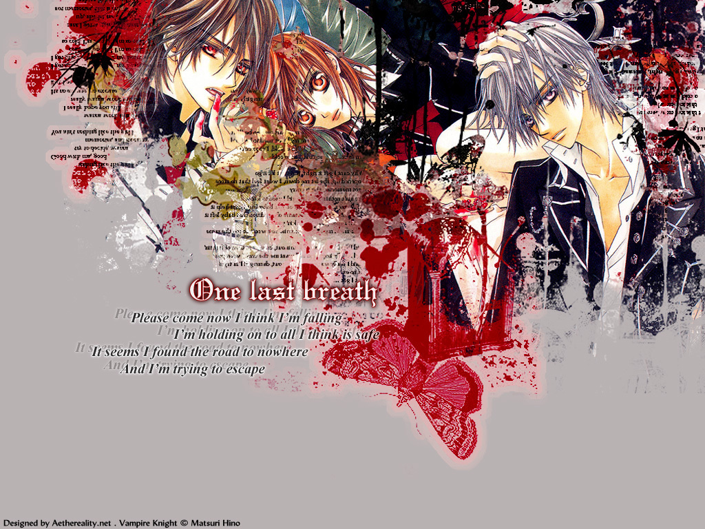 Vampire Knight *** Matsuri Hino*** - Page 4 Vampire-Knight-vampire-knight-1347754-1024-768