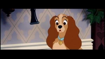 No seré un perro casero (La dama y el vagabundo fanfic) - Página 2 Lady-and-the-Tramp-movies-1532612-400-225
