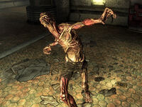 Bestiary 200px-FO3_feral_ghoul