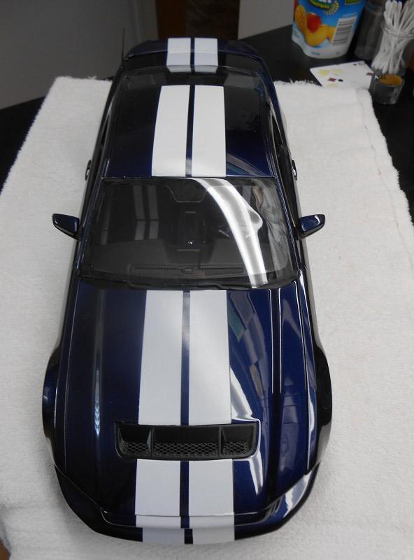 2010 Shelby GT-500 1/12 DSCN0853-vi