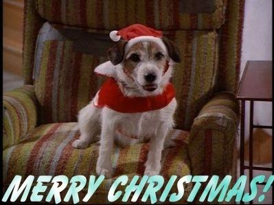 Frasier - Página 4 Christmas-Eddie-frasier-9253303-399-299