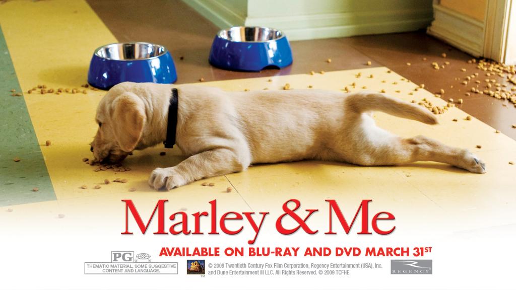 Quel sont vos films préférés avec des chiens ? Marley-and-Me-marley-and-me-5315874-1024-576