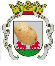 Vitoria-Gasteiz Patata