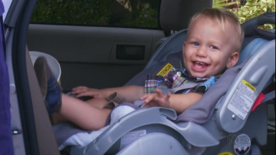 el pequeño Harrison Morgan Harrison-Morgan-dexter-17318821-880-495